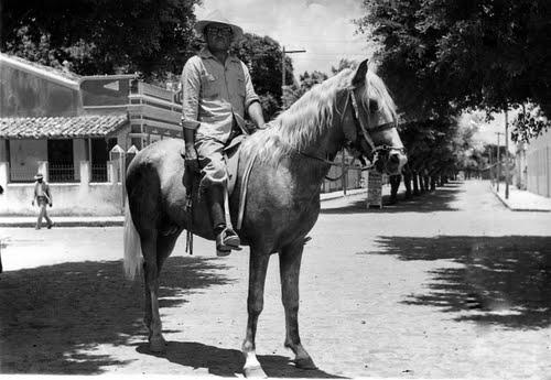 Lauro Passos Cavalo